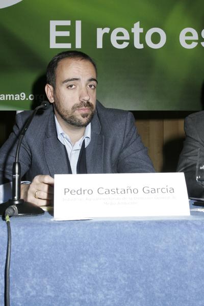Conama9 listado de actividades for Pedro camera it